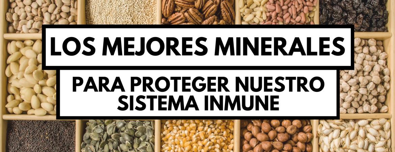 Hierro, Selenio, Zinc y Cobre, 4 grandes minerales